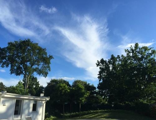 Falsterbo i sol