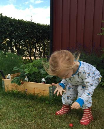 Pippi i jordgubbslandet